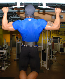 Dumbbell Rows Back Exercise Free Example