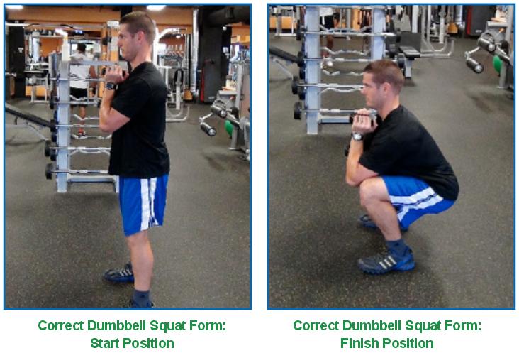 dumbbell squat - correct