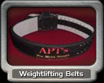 Exercise Fitness Weight Belts