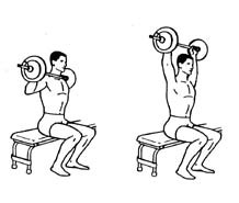 Develope Your Shoulder Muscles With This Barbell Shoulder Press Exercise