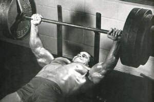 The Musclemedia Mm2k Bench Program