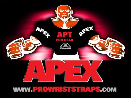 APT APEX bench press shirt