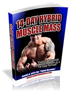 Review of Elliott and Mike's 14-Day Hybrid Muscle Mass