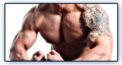 Review of 14-Day Hybrid Muscle Mass