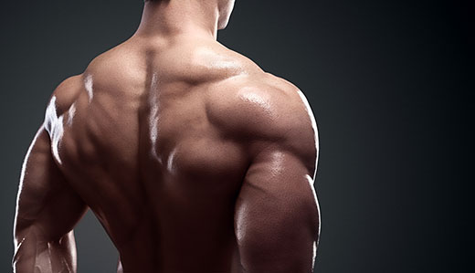 Successful bodybuilding isn't that difficult!