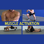 Muscle Activation Exercises to WAKE UP Your Muscles