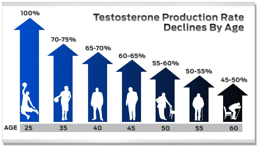 The natural decline of testosterone production