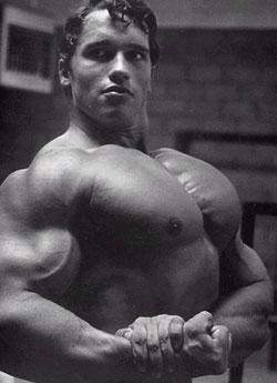 Bodybuilder Arnold Schwarzenegger Bodybuilding