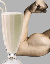 Whey Protein Supplement Review and Guide