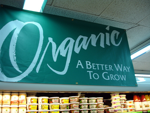 Why Is That Organic Food Is Better Than Chemical Food?